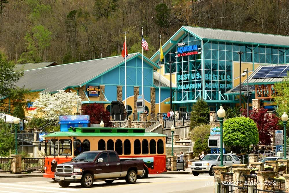 4 Fun Things to Do in the Smokies with Your Family and Friends