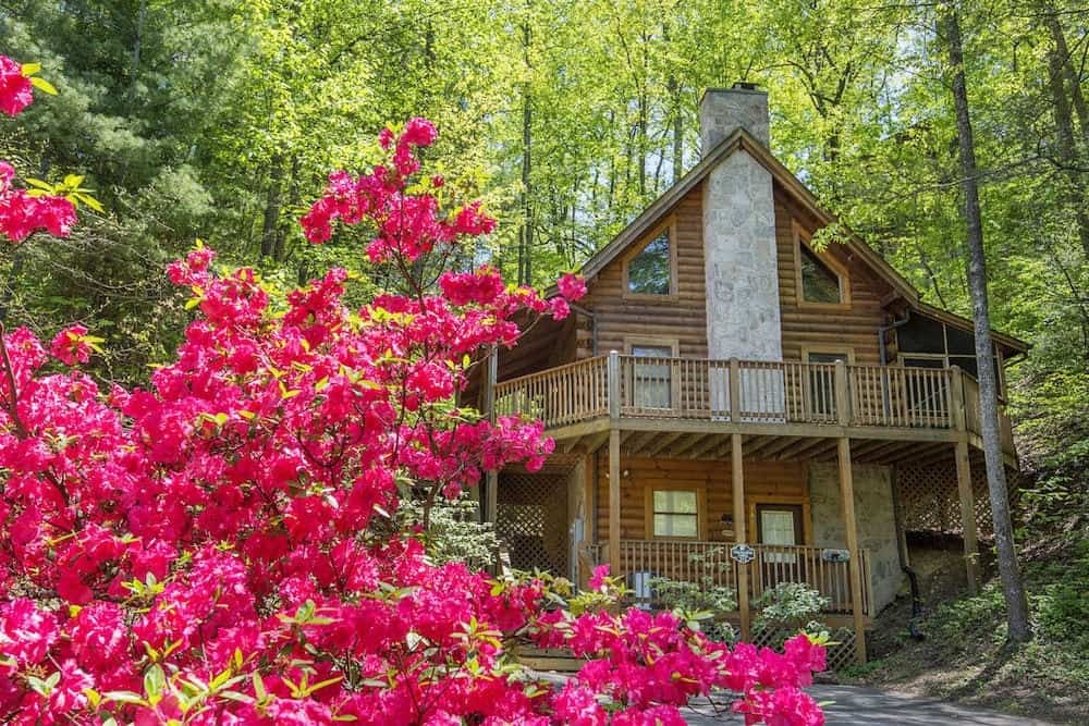 treasured times pigeon forge cabin